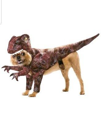 Raptor Medium Pet Animal Planet Costume by California - Pet Raptor Kostüme