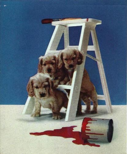 1930  Beautiful  Calendar Art, 3 Puppies Triple Trouble