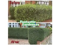 Gardening and jet wash services