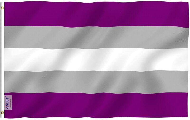 Anley Fly Breeze 3x5 Foot Greysexual Pride Flag - Graysexual Grey Ace LGBT Flags