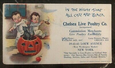 Mint Vintage USA Picture Postcard PPC Halloween In The Night All Cats Are Black (Halloween Night In Usa)