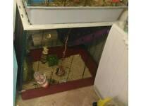 Large Rat chinchilla cage