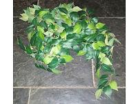 Plastic/Fabric fake leaves/ivy