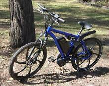 Awesome Electric Bicycle
