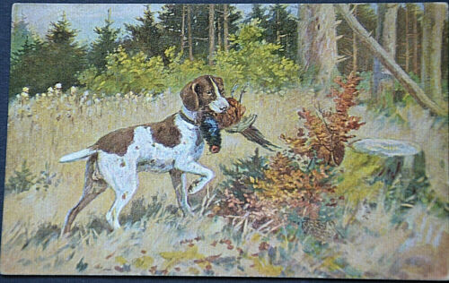 49530 Ak Hunting Dog With Erlegtem Rooster IN Maul On Glade