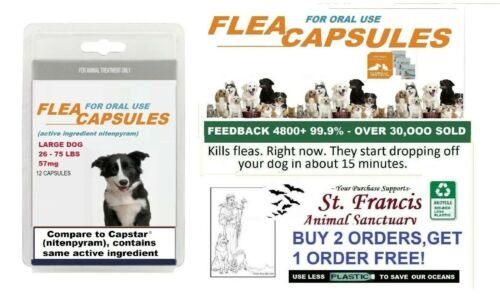 St. Francis Animal Rescue FLEA Killer control LARGE Dogs  16 doses works FAST!