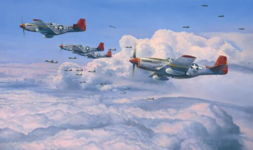 The Fighting Red Tails by Robert Taylor with Charles McGee and Tuskegee Airmen
