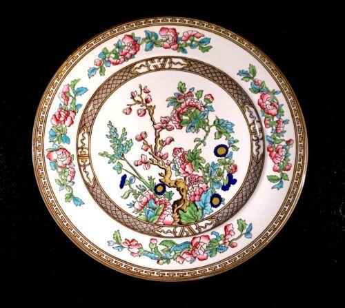 Beautiful Bridgwood Indian Tree Dinner Plate