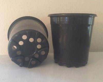 1 GALLON PLASTIC NURSERY POTS 5 10 25 50 100 250 500 5 Gallon Nursery Pot