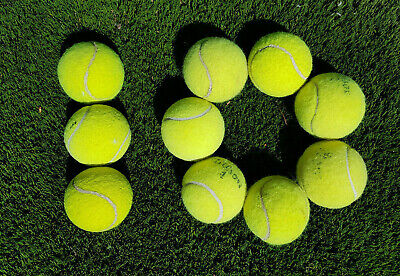 10 Used Tennis Balls For Dog Exercise or Tennis works great with a ball launcher