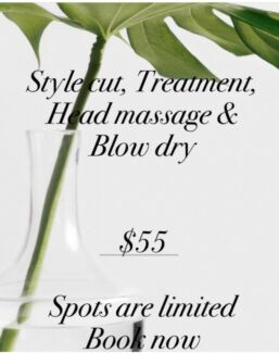 $55 Style Cut, Treatment, Head Massage and Blowdry