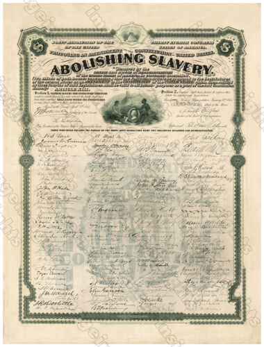13th AMENDMENT ABOLISHING SLAVERY 1868 Restored Engraving Reprint / Poster 11x14