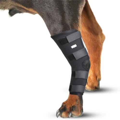 Wovomo Dog Canine Rear Leg Hock Compression Brace Injury Sprains Large