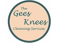 The Gees Knees Cleaning Is here to help!