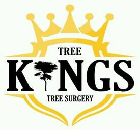 Reliable, friendly, Tree Surgeon