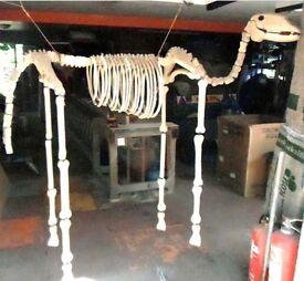 Mock wooden horse skeleton