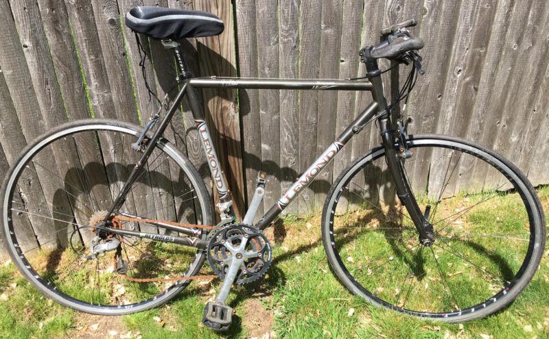 Vintage Greg LeMond Wayzata Bicycle