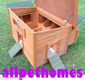 CHICKEN COOP -LARGE CHOOK SHED- HEN HOUSE-  G3L