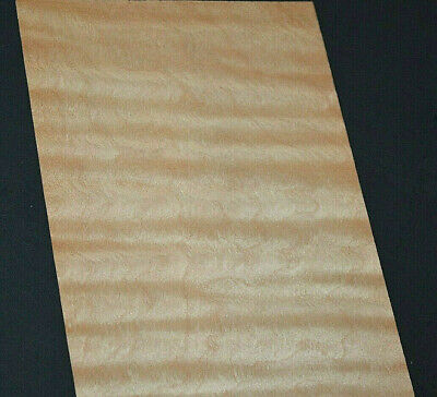 Curly Maple Raw Veneer Sheets 4.75 X 35 Inches 142nd  Cm881