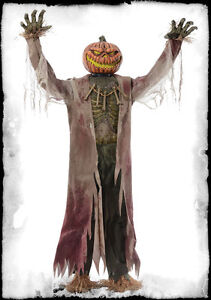 Life size corn stalker scarecrow pumpkin head animated for Animated scarecrow decoration