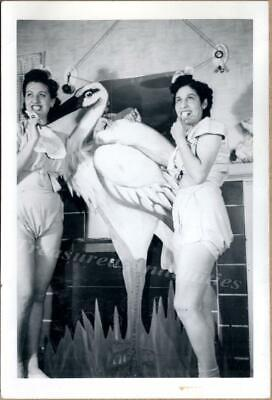 Stand Up Photo Cutouts (1930s Young Women Stork Standup Cutout Pacifier Newborn Underwear Costume)
