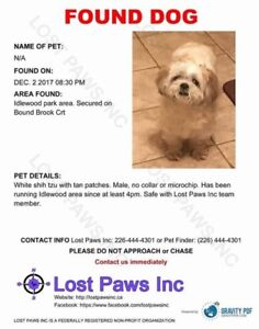 FOUND DOG (missing/lost dog now found)