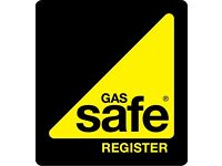 Fully qualified and gas safe registered engineer