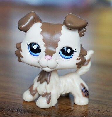 Hasbro Littlest Pet Shop LPS Collie Dog Puppy Blue Eyes Cream Tan Brown  #2210