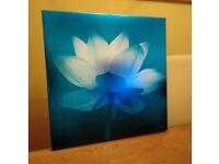 "Next Home Teal High Gloss Metallics Floral Design Canvas 22"" x 22"" x 1.5"" As New Condition"
