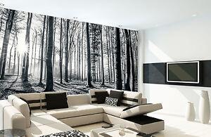 D coration murale taille g ante noir et blanc for t papier for Deco murale noir et blanc