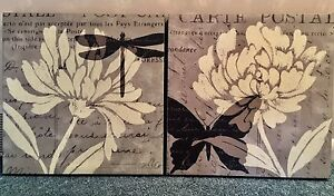 Pair of Dragonfly/Butterfly Canvas Pictures