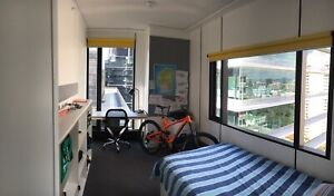 Iglu Brisbane. Student apartment for rent. First week paid for.