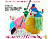 Household / domestic Cleaner