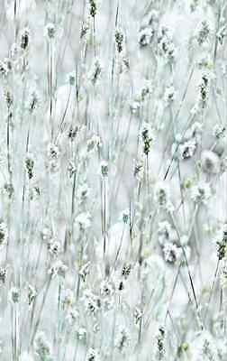 d-c-fix® Premium Somerset Static Cling Window Privacy Film 67.5cm x 1.5m