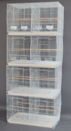 "4 Large 30"" Breeding Budgies For Aviaries Canaries Bird Cages W/Center Divider"