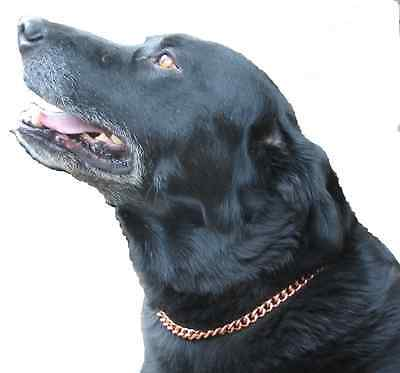"""COPPER MAGNETIC THERAPY DOG CHAIN COLLAR (25"""" -  32"""" )"""
