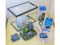 Fisk Tank and accessories