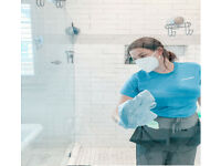 Brilliant,Domestic Cleaner,End of Tenancy Cleaning,1-off,Regular Cleaner,House Cleaner,Cleaning Lady