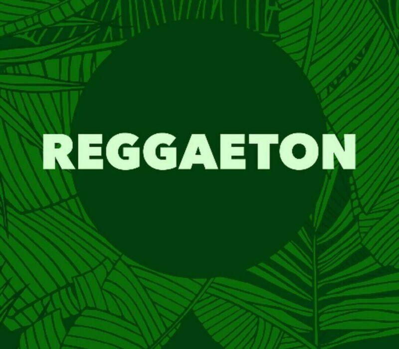USB Flash Drive + DJ Music- Reggaeton, Dancehall, Reggae Songs- 900 Tracks