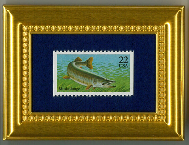 MUSKELLUNGE MUSKIE  - A COLLECTIBLE GLASS FRAMED POSTAGE MASTERPIECE!