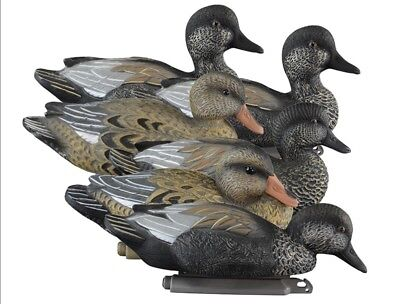 New - Higdon Outdoors - Standard Gadwall Duck Decoys - 6 Pack - Free Shipping