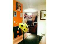 DOUBLE ROOM AVAILABLE NOW!!!