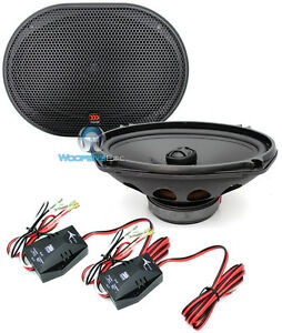 Morel tempo speakers