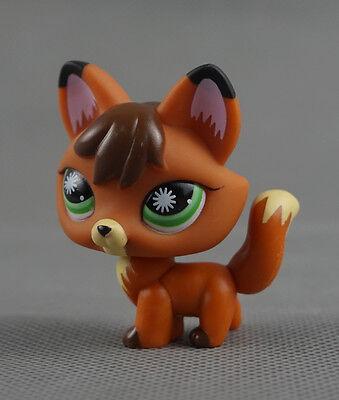 Littlest Pet Shop LPS Toys #807 Firefox Green Star Burst Eyes Shades Brown Fox