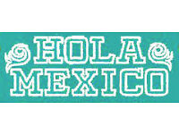HOLA MEXICO: English - Spanish Translation service