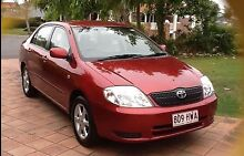 2004 TOYOTA Corolla Woolloongabba Brisbane South West Preview