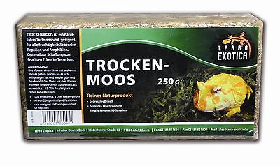 Moos 100 g Trockenmoos zur Deko im Terrarium , grünes Moos