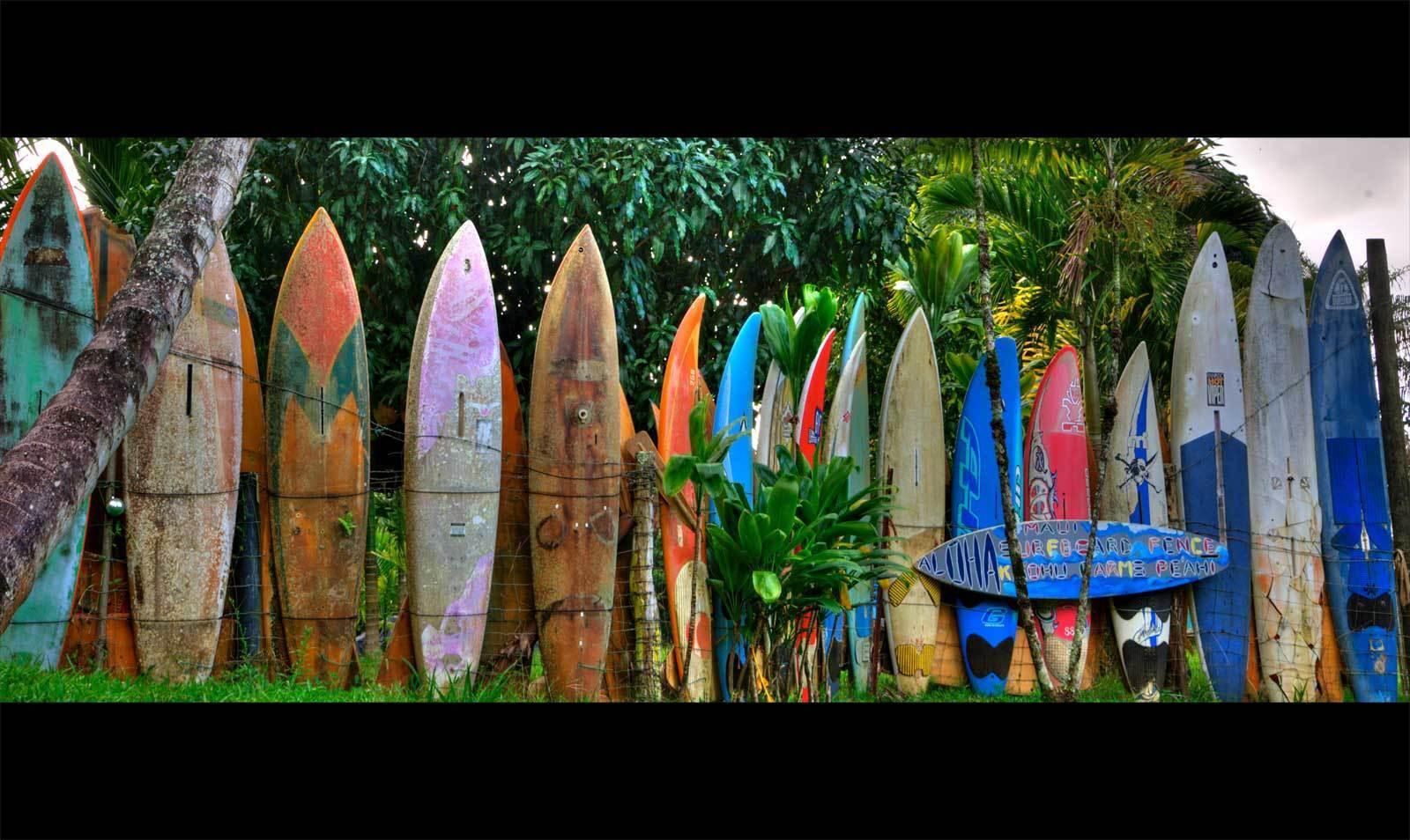 the_beach_zone