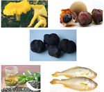mushroom_tea_seafood_fruit_truffle