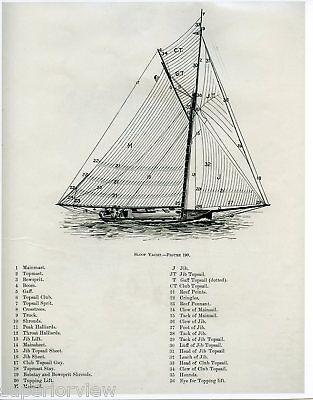 Sloop Yacht Sailing Diagram Vintage Sailboat Drawing Sails Masts Identified 1893